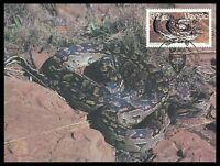 VENDA MK 1986 FAUNA SCHLANGEN SCHLANGE SNAKE MAXIMUMKARTE MAXI CARD MC CM cr80
