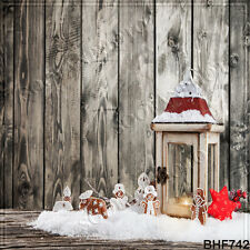Christmas 10'x10' Computer/Digital Vinyl Scenic Photo Background Backdrop BHF742