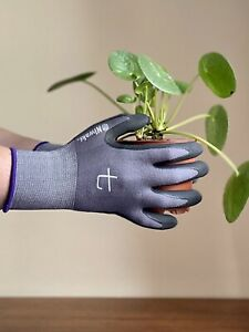 Niwaki Garden Gloves Size Medium