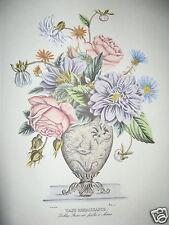 Ediz Fiorella Falteri Florence Italy HC print Prevost Renaissance Vase dahlias