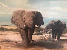 Charles Frac'e Elephants at Kilimanjaro Signed Lithograph print# 991 Plate XVII