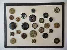 1800s Antique Victorian Mixed Celluloid Buttons in Huge Card for Framing-25 pcs