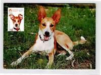 AUSTRALIA MK HUNDE HUND DOG DOGS MAXIMUMKARTE CARTE MAXIMUM CARD MC CM d9998