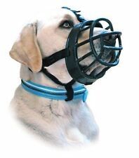 Company of Animals Dog Training & Obedience Supplies
