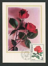 BULGARIA MK 1970 FLORA ROSEN ROSE ROSES MAXIMUMKARTE CARTE MAXIMUM CARD MC d6317