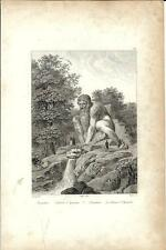 Stampa antica FIRENZE Parco Pratolino Statua Colossale 1834 Old print Florence