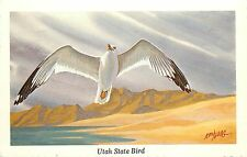Vintage Art Postcard A/S Ken Haag Utah State Bird California (Sea) Gull Unposted