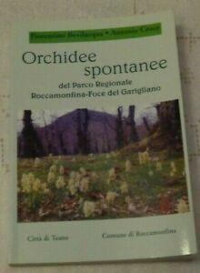 ORCHIDEE SPONTANEE DEL PARCO REGIONALE ROCCAMONFINA FOCE DL GARIGLIANO
