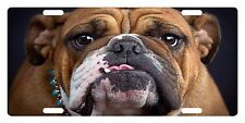 BULL DOG Custom License Plate CANINE BREED Emblem FACE Version