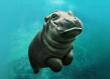 CUTE BABY HIPPO SWIMMING * QUALITY CANVAS ART PRINT