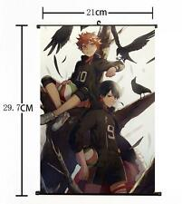 Hot Japan Anime Haikyuu!! Shoyo Hinata Shonen Home Decor Poster Wall Scroll 011