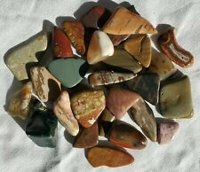 Tumble Polished • Mixed Agate & Picture Jasper Pieces • 8 oz. 3234