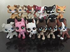 12 Littlest Pet Shop LPS 4-Collie Dog 5-Great Danes 3-Short Hair Cats Family Set
