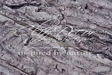 24pcs. plastic molds *Tree Bark* for concrete veneer wall stone stackstone tiles