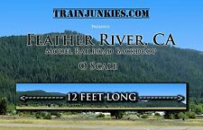 "TrainJunkies O Scale ""Feather River Mt""  Backdrop L2R 24x144"" C-10 Brand New"