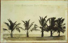 Isla de Pinos/Isle of Pines, Cuba 1930s Realphoto Postcard: Playa Bibijagua