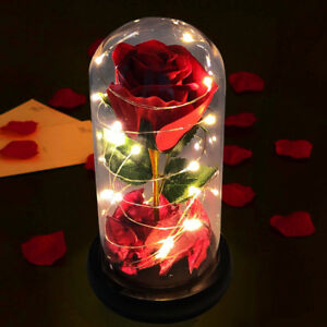 Preserved Rose Glass Dome LED Light Mum Birthday Christmas Mothers day Gift