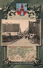 13574/ Foto AK, Wappenkarte, Schleswig, Süderholmstrasse, 1904