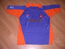 AKKA ACL Detroit Auto IX Cricket League Jersey Large Nice Indian Kannada
