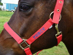 Personalised Embroidered Headcollar FROM £9.90.Pony Size