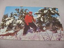 Vintage Postcard 1953: Color Man Hunter Hunting Deer Winter Scene
