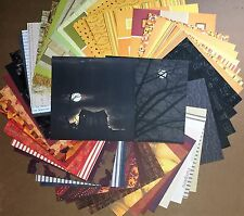 DCWV Fall Stack Halloween Lot of 60 sheets 12x12 Scrapbook Paper Free Shipping!
