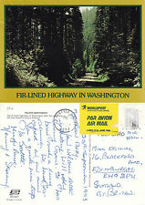 1993 FIR LINED HIGHWAY WASHINGTON UNITED STATES COLOUR POSTCARD