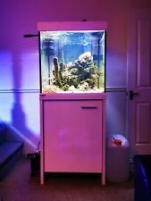 Eheim 300L Marine Tank Set Up