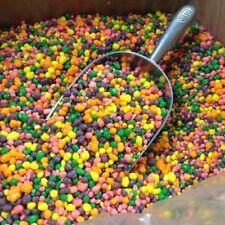 Wonka Nerds bulk rainbow Nerds candy 2 pounds