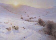 """Joseph Farquharson, Sun Peeps o'er Yon Hill -  Sheep Landscape Art Print 16x20"""""""