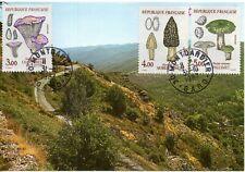 FRANCE - carte les CEVENNES  et 3 timbres champignons - oblit. Montdardier 1987.