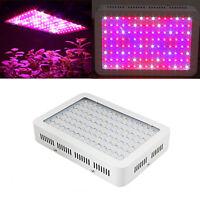 1200W Full Spectrum LED Grow Light Kits Two Chips for Medical Farm Plants
