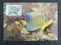 MALEDIVES MK TROPICAL FISH FISCHE FISCH MAXIMUMKARTE CARTE MAXIMUM CARD MC c5270