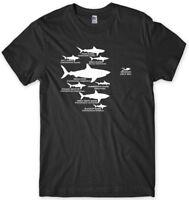 Shark Hierarchy Diver Diving Funny Mens Unisex T-Shirt
