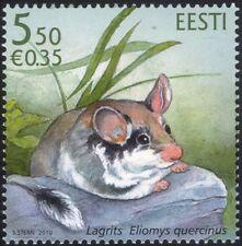 Estonia 2010 Garden Dormouse/Animals/Wildlife/Nature/Conservation 1v (ee1044)