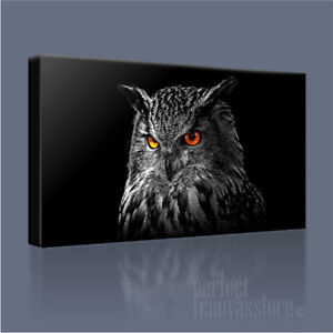 EAGLE OWL WILDLIFE SERIES STUNNING HAND-CRAFTED CANVAS ART PRINT + FREE UPGRADE