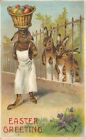 Dressed Chef Rabbit~in Apron w. Egg Basket on Head~Bunnies Easter Postcard-p281