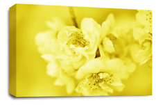 FLORAL FLOWER ART Picture Yellow Grey White Spring Blossom Canvas Wall Large