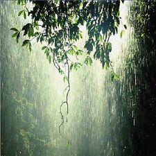 D049  SOUNDS OF NATURE RELAXING CALMING TROPICAL RAIN STORM AUDIO CD