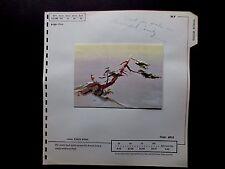 Disney Artist Tyrus Wong 1959 Sample Xmas Greeting Card Bambi Surveying Domain