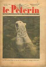 Ours Blanc polaire Polar bear Ursus maritimus Zoo France 1937 ILLUSTRATION