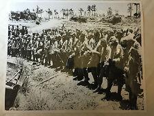 ww2 photo press  Japanese war prisoners , Okinawa     115