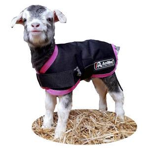 AniMac Waterproof Lamb Coat | Kid | Cria | Small Dog | Breathable