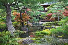 STUNNING JAPANESE ZEN GARDEN LANDSCAPE #366 NATURE A1 CANVAS PICTURE WALL ART