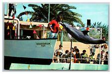 Vintage 1940's Postcard Porpoises Miami Seaquarium Miami Florida