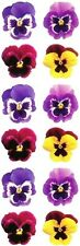 ~ Pansies Pansy Flowers Yellow Purple Photo Paper House StickyPix Stickers ~