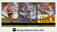 Rare--1995 Select AFL Sensation Cards Base Card Team Set Geelong (3)