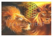 Energie Bild - Die Blume des Lebens - Magische Löwen - Meditationsbild Löwe