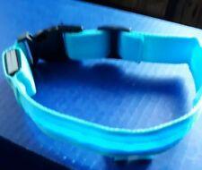 Dog collar LED Light Up Dog Pet Night Safety Flashing Adjustable Blue medium