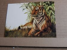 Postcard Tiger Athena  card posted 1980's
